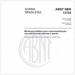 NBR13724