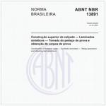 NBR13891