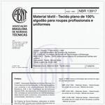 NBR13917