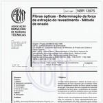 NBR13975