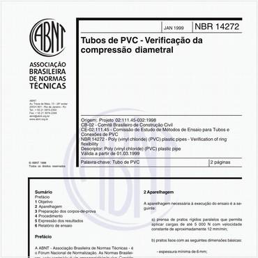 NBR14272 de 01/1999