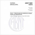 NBR14419