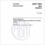 NBRISO10545-9