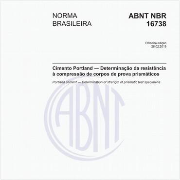NBR16738 de 02/2019