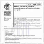 NBR11700