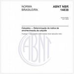 NBR14838