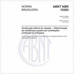 NBR15393