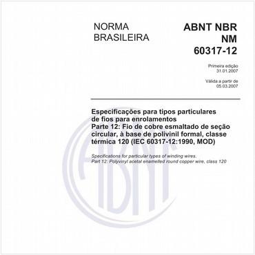 NBRNM60317-12 de 01/2007