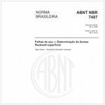 NBR7407
