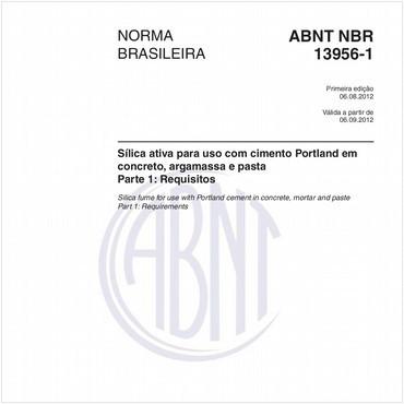 NBR13956-1 de 08/2012