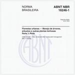 NBR16246-1