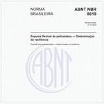 NBR8619
