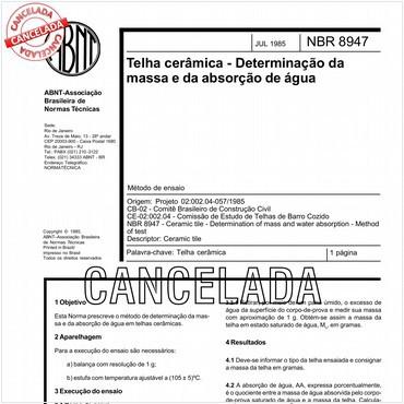 NBR8947 de 07/1985