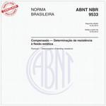NBR9533