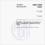 NBR13041