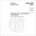NBR13313