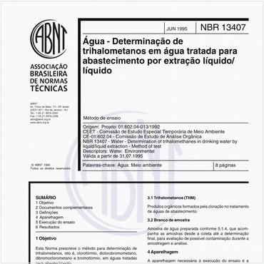 NBR13407 de 06/1995