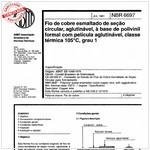 NBR6697