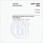 NBR6593
