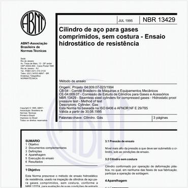 NBR13429 de 07/1995