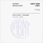 NBR13441