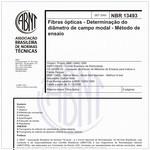 NBR13493