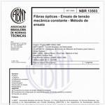 NBR13503