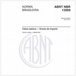 NBR13509