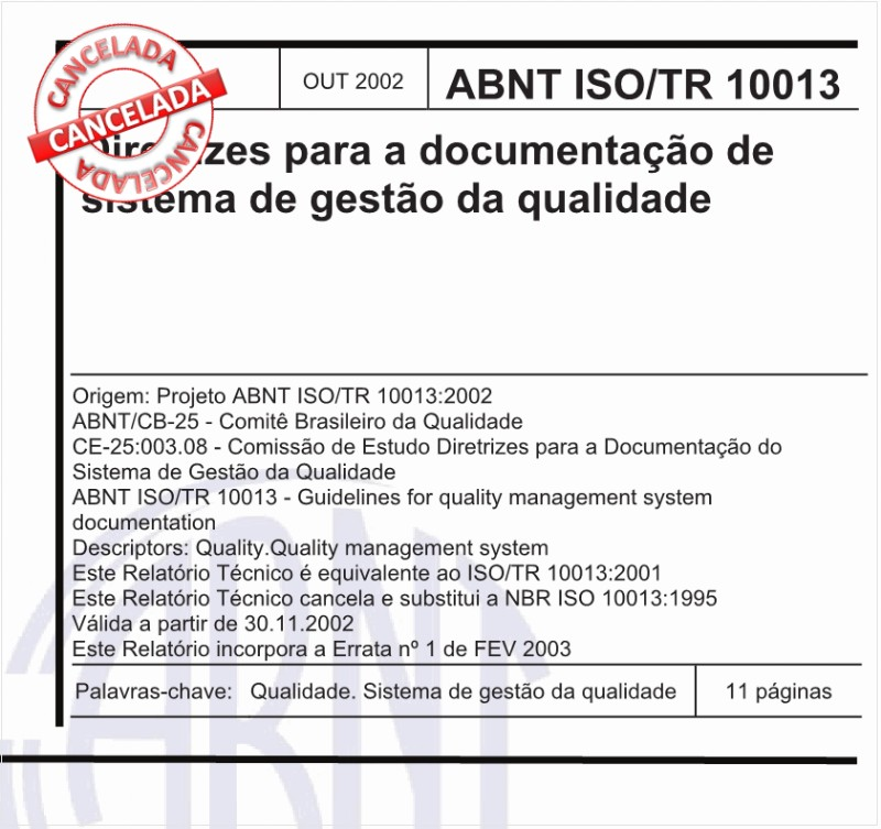ABNT ISO/TR10013