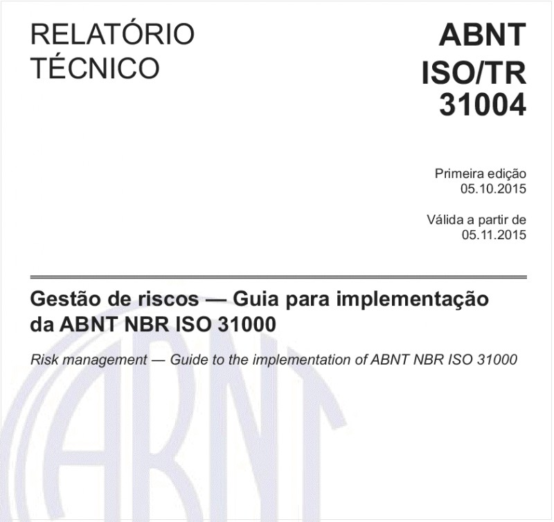 ABNT ISO/TR31004